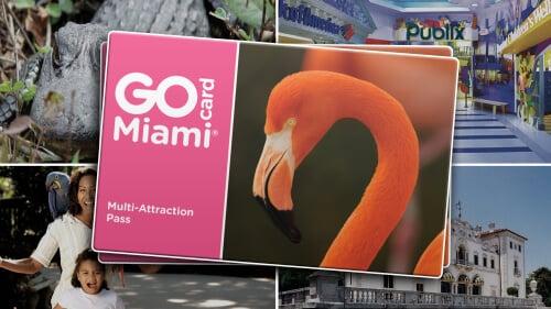 Economize 55% em um passeio de barco por Key Biscayne e mais 27 atrações usando o GoCard Miami