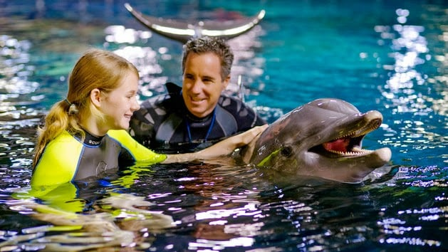 Nadando com golfinhos na Disney em Orlando
