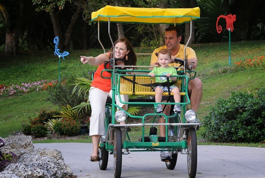 Zoo Miami Crianças e Filhos