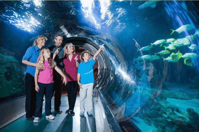 Interior da atração do Aquário Sea Life