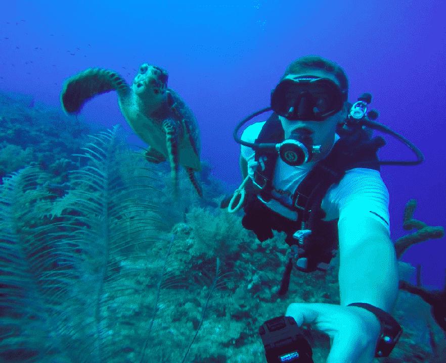 Mergulho em Miami