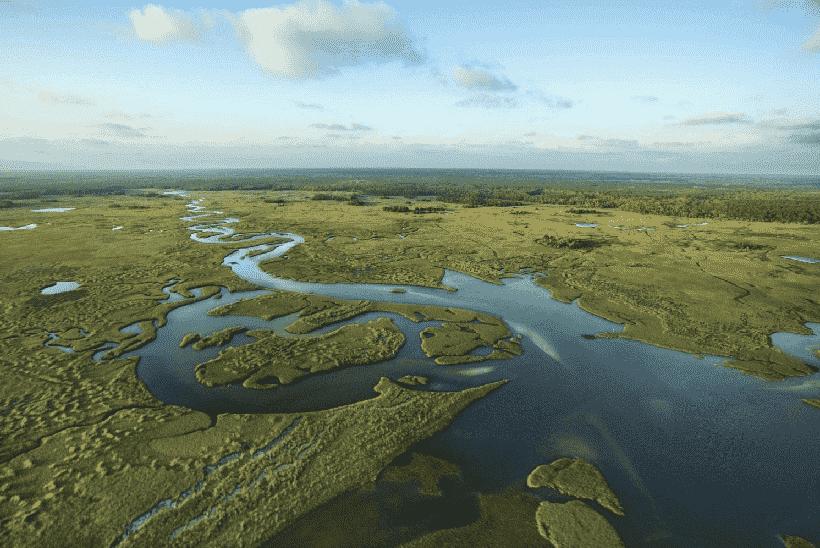 Everglades em Miami