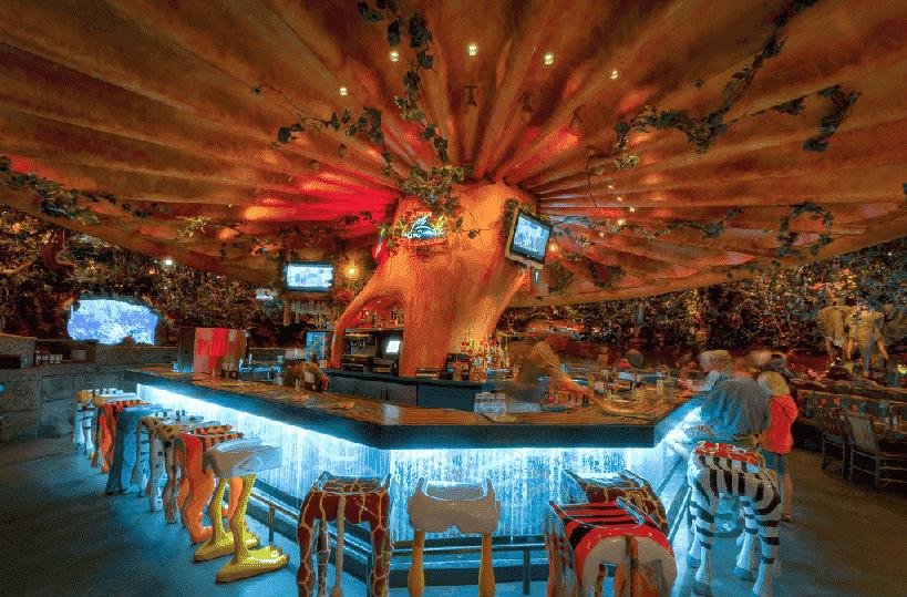 Restaurante Rainforest Cafe no Animal Kingdom em Orlando