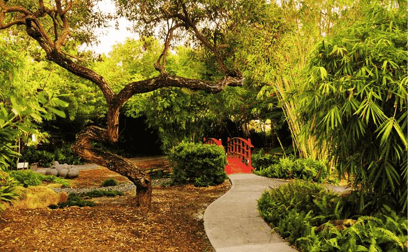 Miami Beach Botanical Garden: ponte e área verde